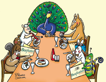 Cartoon illustration for Beefeater restaurants press release. Cartoon of animals sat around a restaurant table reading 'Beefeater' menu's. Cartoon peacock, cartoon horse, cartoon rabbit eating, cartoon sheep, cartoon beaver, cartoon hen